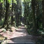 【上色見熊野座神社】パワースポット&阿蘇グルメツーリング【南阿蘇】